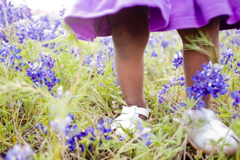Bluebonnets 2010-038